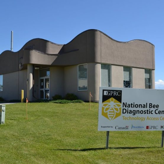 National Diagnostic Bee Lab – Concrete & Earthwork Contractor